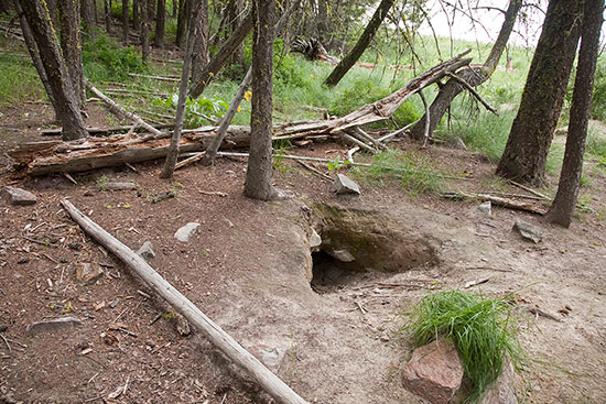 One of the Lookout Pack den entrances. Photo courtesy of David Moskowitz.